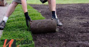 شركة تزيين الحدائق بالرياض
