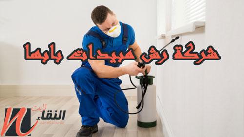 شركة رش مبيدات بابها 0533914599