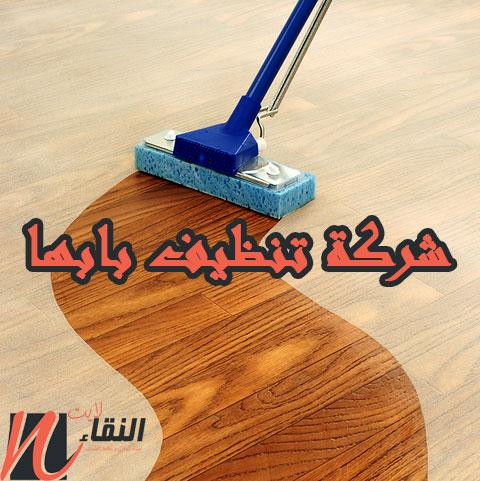 شركة تنظيف بابها 0543259774