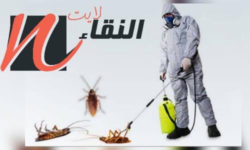 شركة رش مبيدات بالخفجي