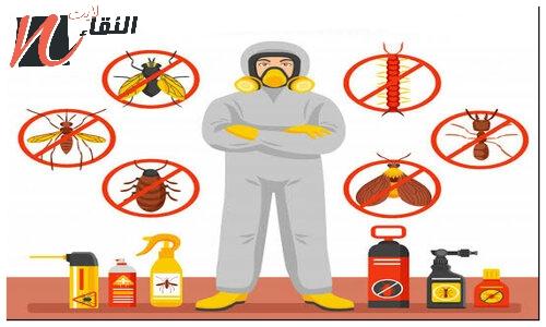 شركة مكافحة حشرات بجدة 0536098485